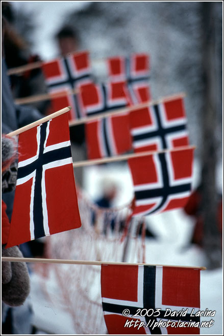 Cross-country Skiing Fans - Best of 2003, Norway. Cross-country Skiing Fans