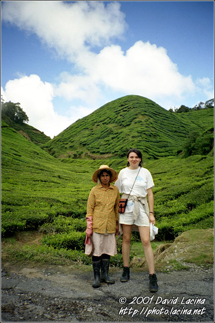 Eva And Local Worker - Cameron Highlands, Malaysia