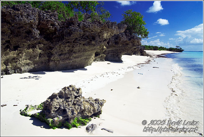 Rocks By Nothern Coast - Northern Zanzibar, Tanzania