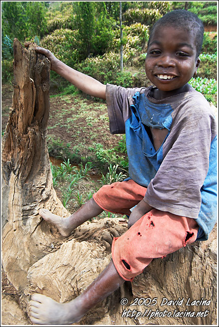 Humble And Friendly - People Of Usambara Mountains, Tanzania