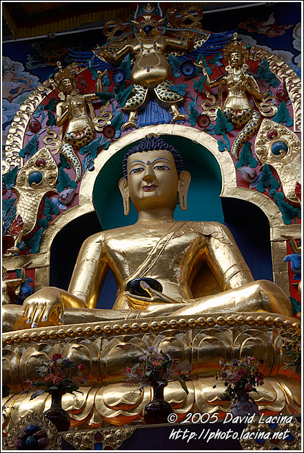 Buddha Shakyamuni Plated With Gold - Golden Temple, Namdroling Monastery, India