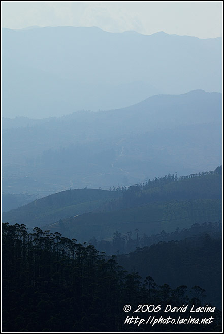 Ooty Landscape - Ooty, India