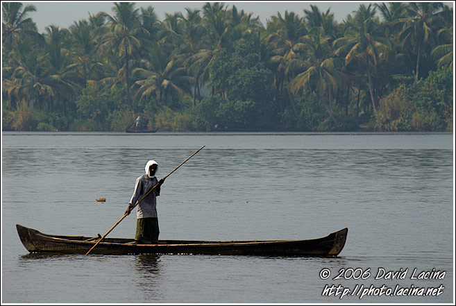 Morning Life On Backwaters - Backwaters, India