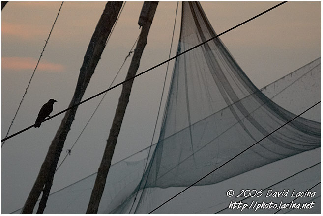 Chinese Net (Cheena Vala) - Cochin - Chinese Nets (Cheena vala), India