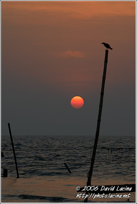 Sunset In Cochin - Cochin (Kochi), India