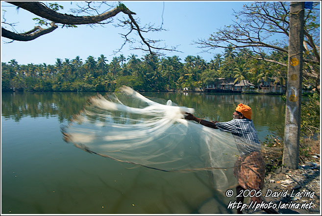 Fisherman Throwing Net - Cochin (Kochi), India