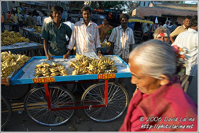 Stall With Bananas, Local Market, Mysore - The People, India
