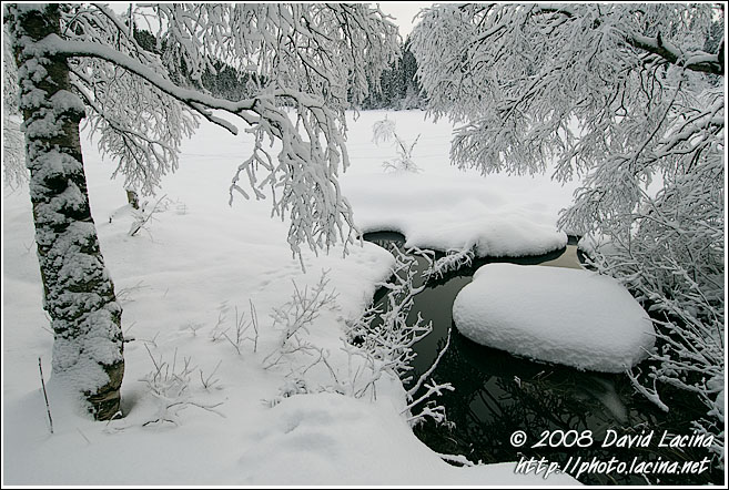 New Snow In Nordmarka - Best of 2007, Norway