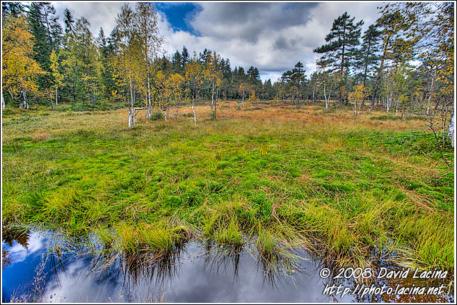 A Moor On The Way To Skjennungstua - Autumn in Nordmarka, Norway