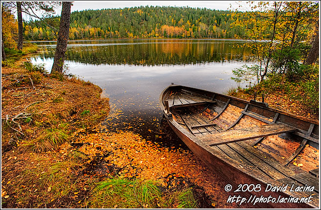 Fall By Kopperhaugtjernet - Autumn in Nordmarka, Norway