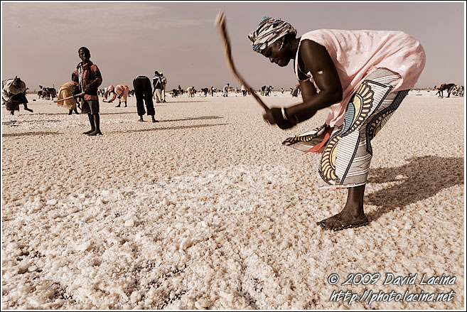 Breaking Down Salt Layer - Salt Harvesting, Senegal