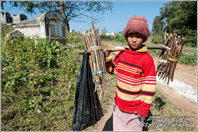 Boy Carrying Wood - Hsipaw, Myanmar (Burma)