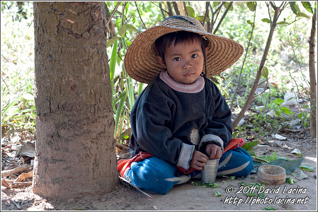 Boy Under Tree - Hsipaw, Myanmar (Burma)