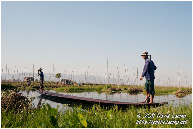 Floating Gardens - Inle Lake, Myanmar (Burma)