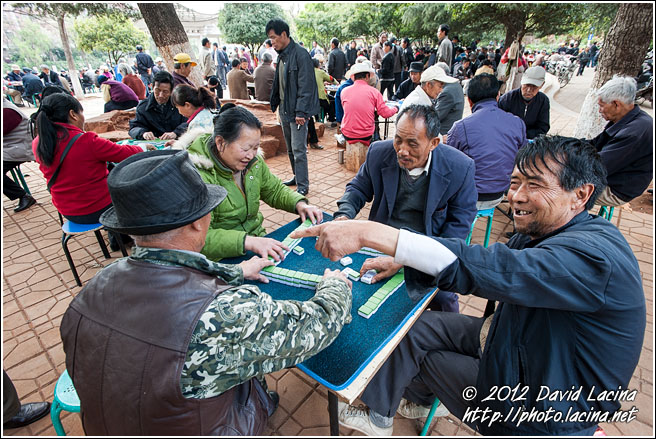 Playing Mahjong - Kunming And Shilin, China
