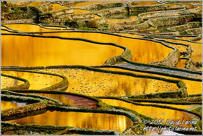 Yuanyang Rice Fields - Yuanyang, China