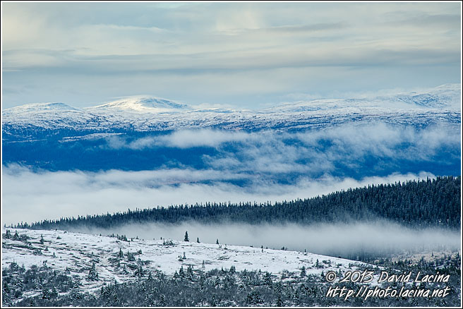 Trysil Winter Landscape - Best Of 2012, Norway