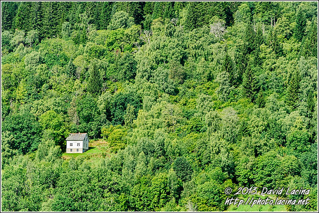 Lonely House - Best Of 2012, Norway