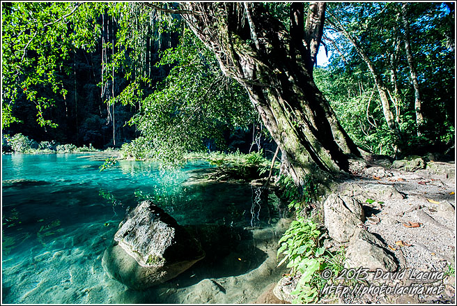 Semuc Champey Limestone Pools - Best Of, Guatemala