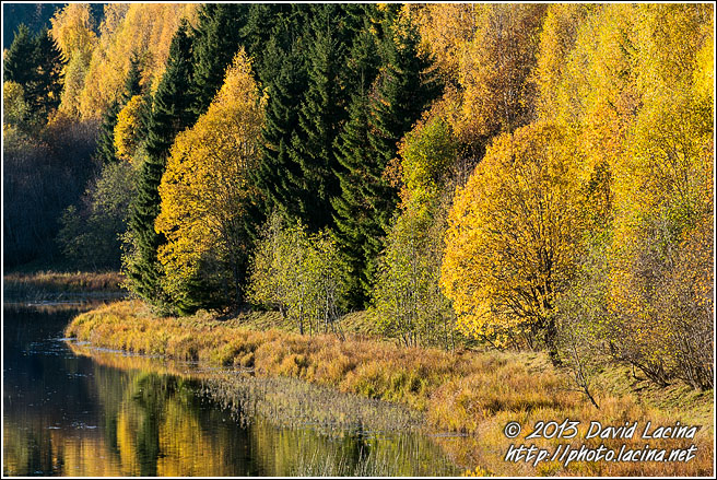 Autumn Colours - Best Of 2013, Norway