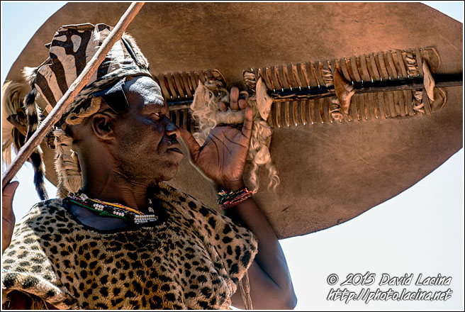 Zulu Warrior - Best Of SA, South Africa