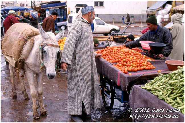 Shopping In Souq, Meknes - Best Of Marocco, Marocco