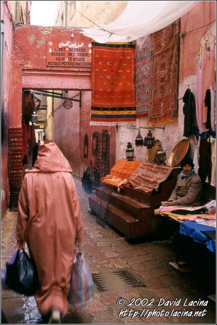 Street Of Medina, Meknes - Best Of Marocco, Marocco