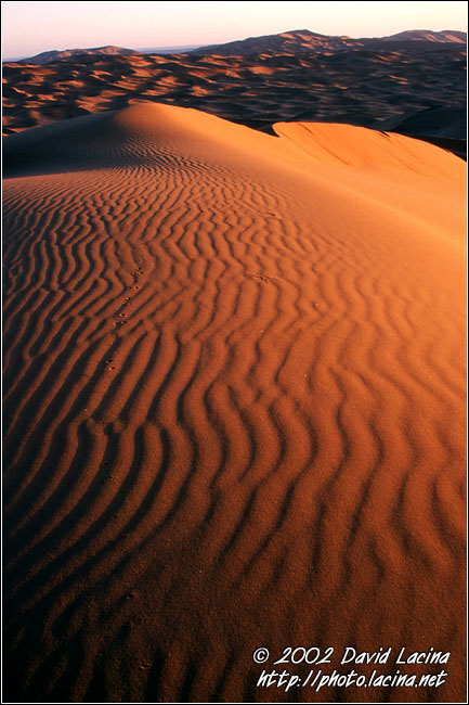 Sunrise At Erg Chebbi - Best Of Marocco, Marocco