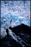 Walking On Svellnosbreen Glacier, Jotunheimen II, Norway