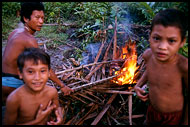 Roasting The Pig, Siberut island, Indonesia