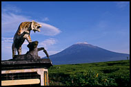 Welcome To Kerinci National Park., Kerinci, Indonesia