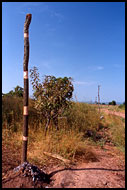Marriage Pole, Lobi tribe, Ghana