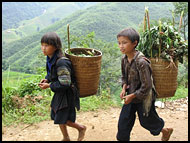 Tribal Kids, Vietnam In Color, Vietnam