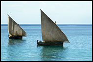 Dhows On Sea, Stone Town, Tanzania