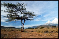Still Alive?, The Suguta Valley-Nature, Kenya