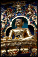 Buddha Shakyamuni Plated With Gold, Golden Temple, Namdroling Monastery, India