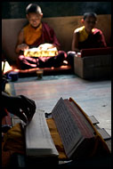 Monks In Prayer, Golden Temple, Namdroling Monastery, India
