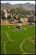 Rice Fields And Moon Landscape, Hampi - Nature, India
