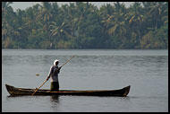 Morning Life On Backwaters, Backwaters, India