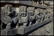 Tiger - The Royal Emblem Of Hoysala Dynasty, Belur And Halebid, India