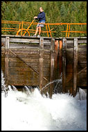 Opening The Lock Chamber, The Telemark Canal (Telemarkskanalen), Norway