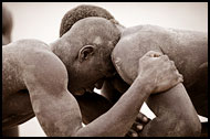 In A Fight, Traditional Wrestling, Senegal