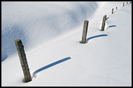 Poles In Snow, Best Of 2010, Norway