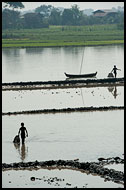 Young Men Fishing, Best Of, Myanmar (Burma)