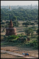 Ox Cart And Bagan Temples, Bagan, Myanmar (Burma)