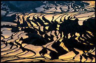 Sunrise Over Rice Terraces, Yuanyang, China