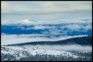 Trysil Winter Landscape, Best Of 2012, Norway