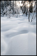 Winter Landscape, Best Of 2012, Norway