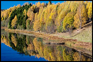 Nitelva In Autumn, Best Of 2013, Norway