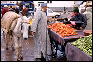 Shopping In Souq, Meknes, Best Of Marocco, Marocco